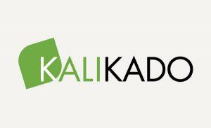 Création de logo pour une agence conseil à Paris